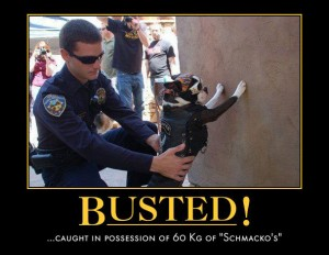 busted dog
