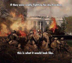 Fighting_for_Freedom_from_F_the_Govt